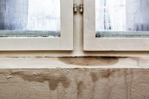 """Byty s okny na severní straně mohou být pokoje plísněmi ohrožovány častěji, """"Čištění plísní v Praze"""""""